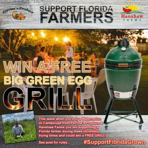 Big Green Egg Grill Contest Winner