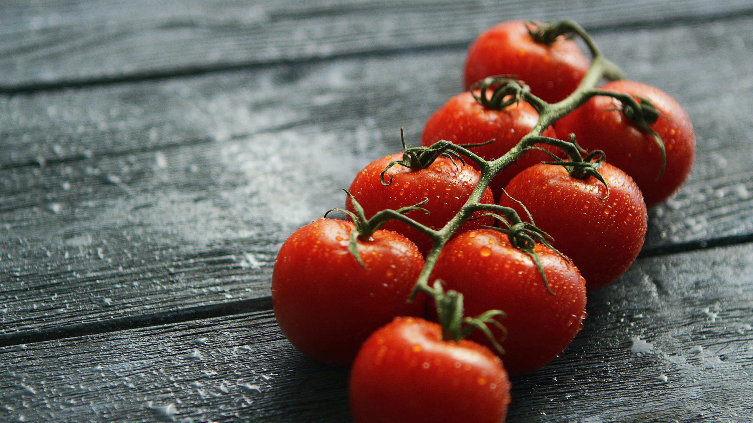 The Best Way to Grow Tomatoes in Your Backyard