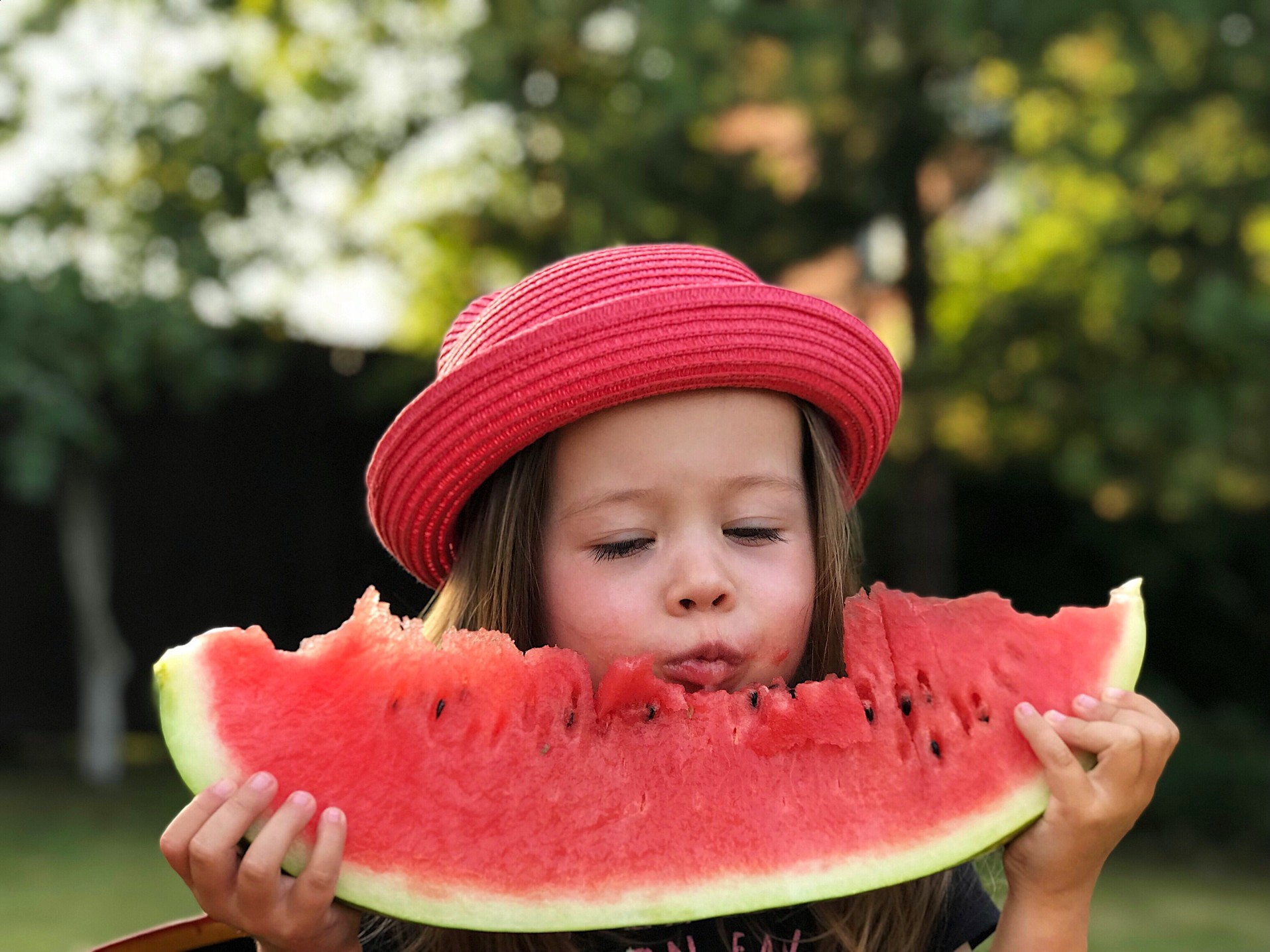 You are currently viewing Choosing a Sweet Watermelon